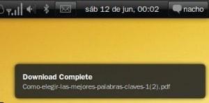Ubuntu 10.04: notificaciones descolocadas 2